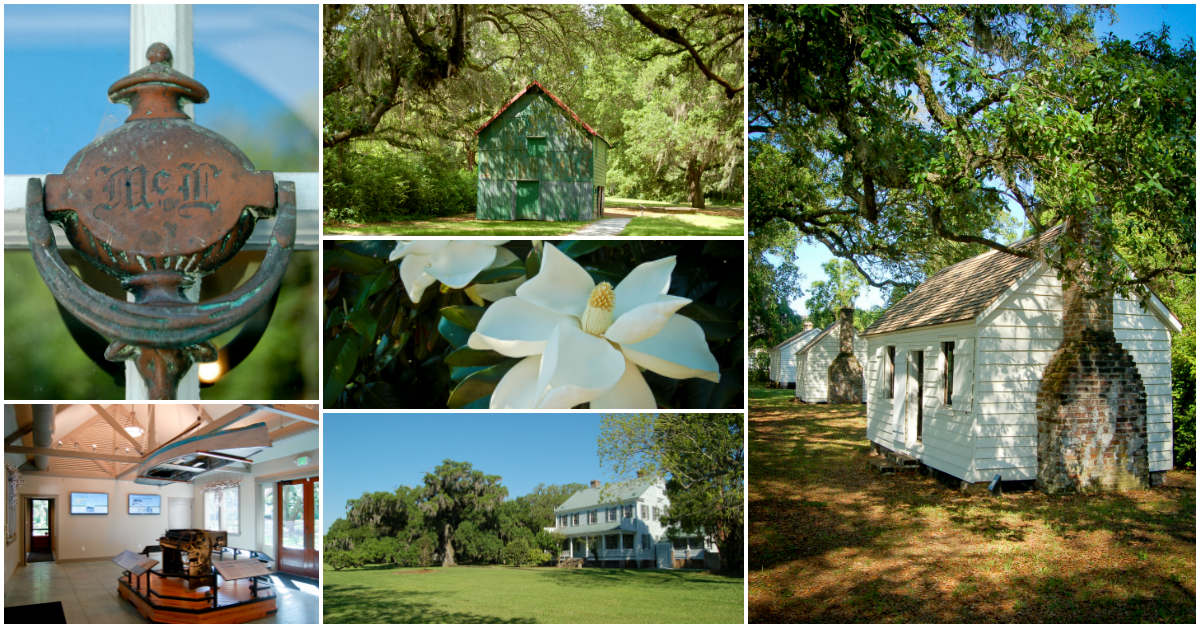 Collage of images from McLeod Plantation Historic Site: The houses of the enslaved, a cotton gin, th