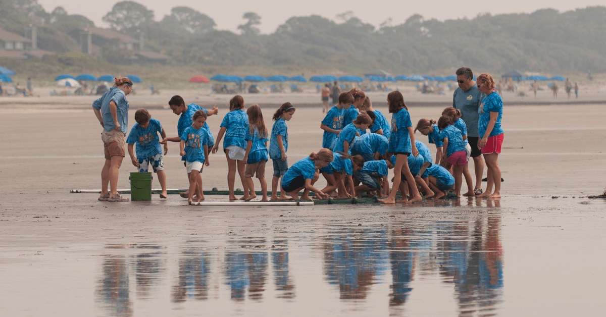 a group of children in matching camp tshirts exploring the beach a a large seine net