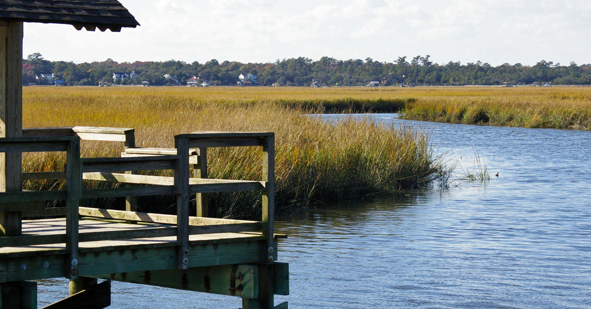 Fishing Dock at James Island County Park