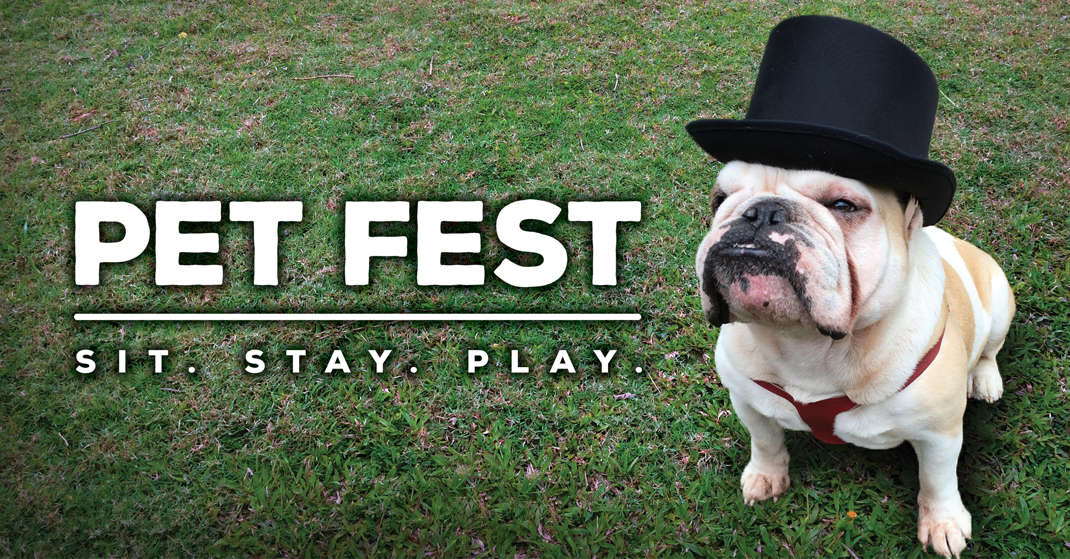 English bulldog in a top hat and the words Pet Fest