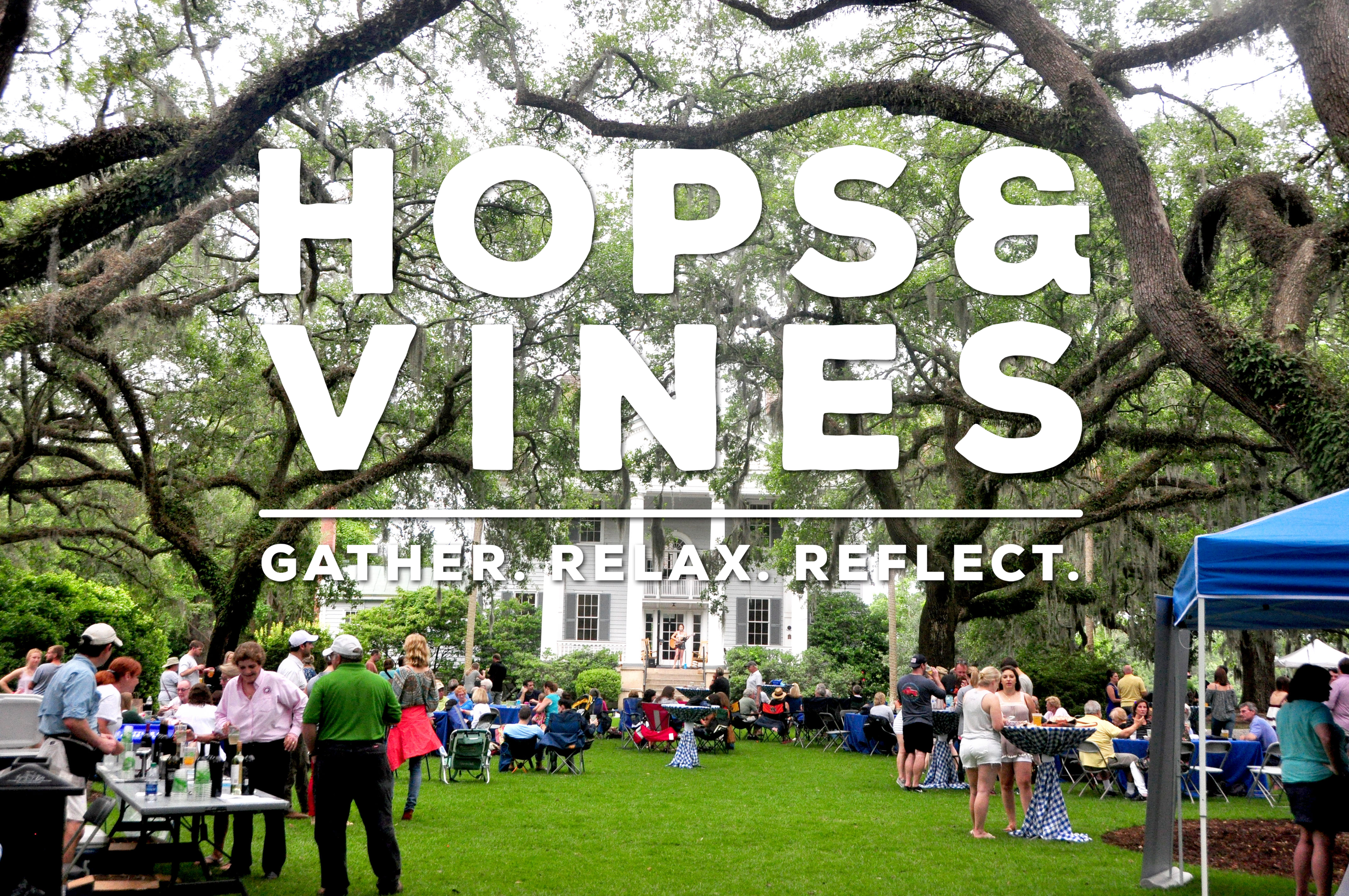 Hops And Vines