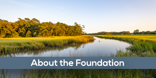 About the Foundation text with a landscape of marshgrass and a creek in the background