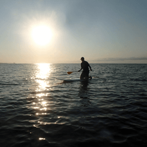 Stand up paddleboarding at sunrise