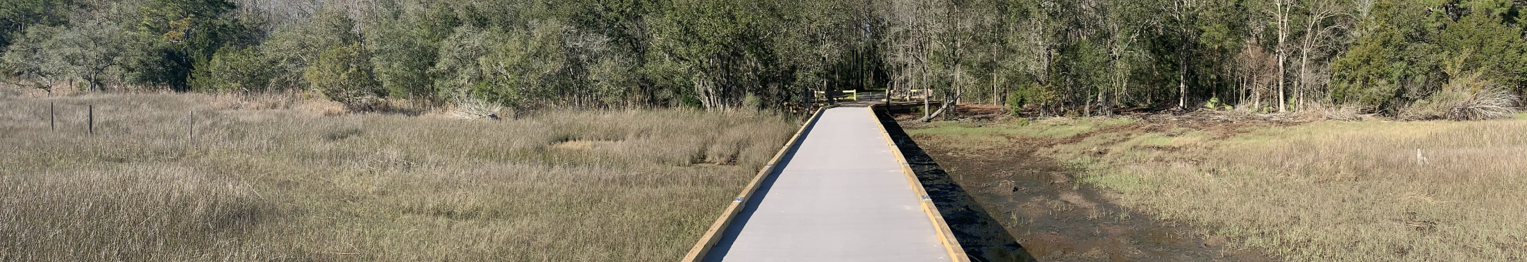 The boardwalk at Stono River County Park