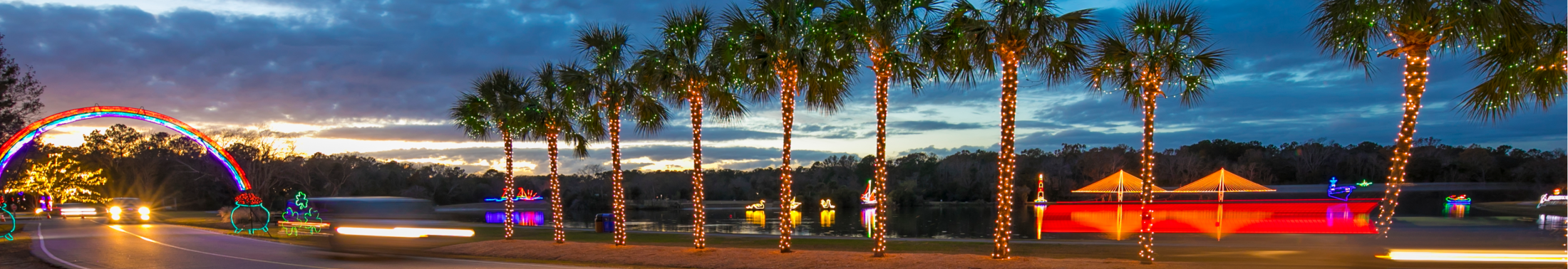 View of a car driving through the Holiday Festival of Lights show at James Island County Park