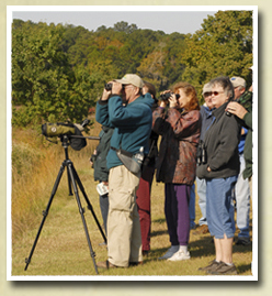Group of people bird watching
