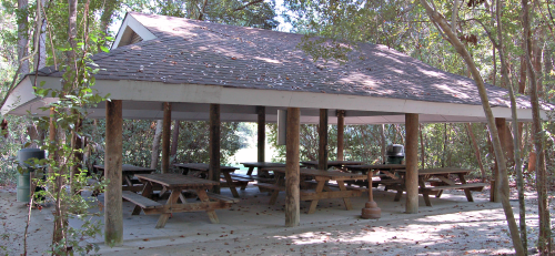 Tall Pine Shelter at Palmetto Islands County Park