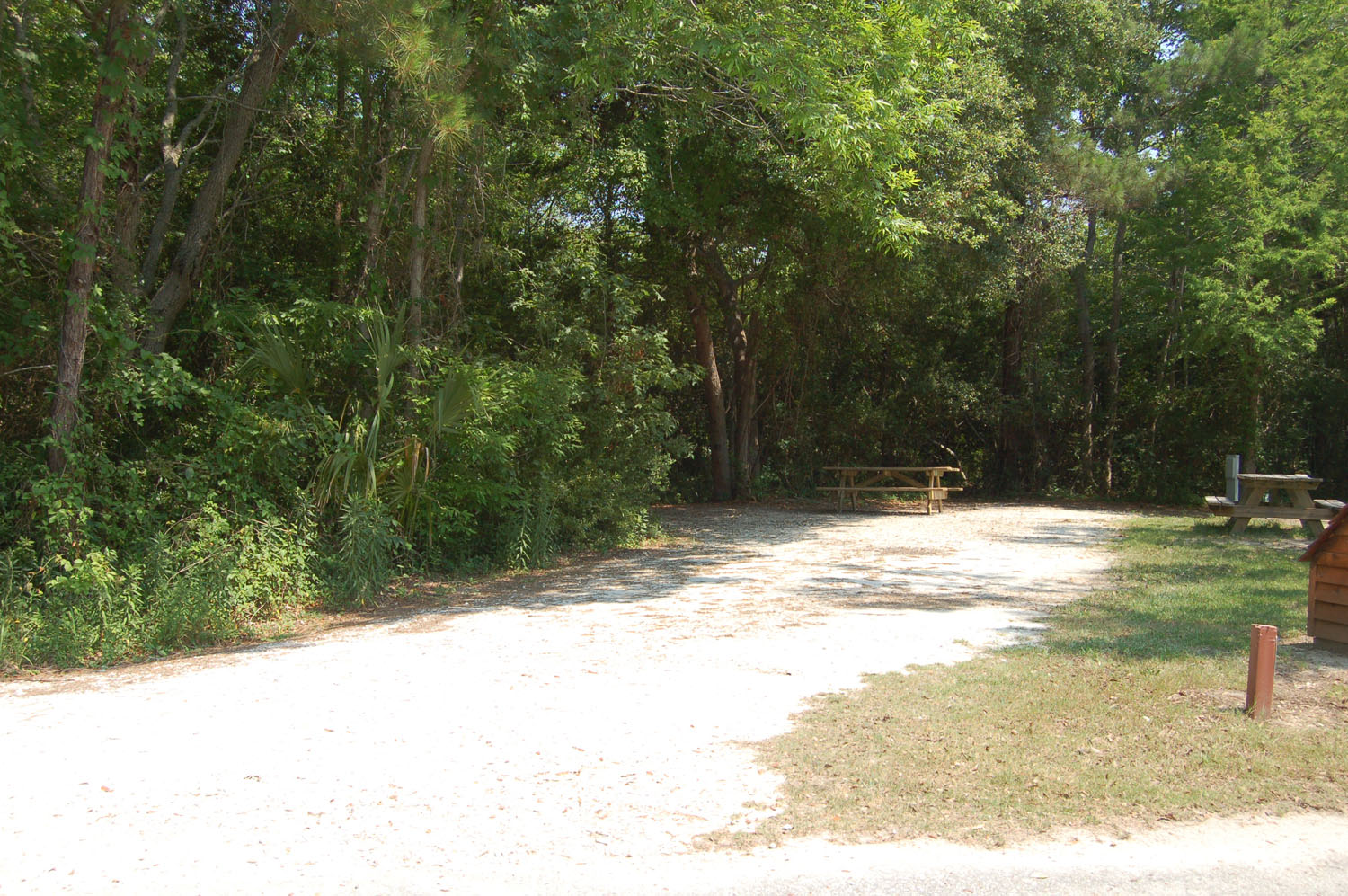 Image of Site #119 at the Campground at James Island County Park