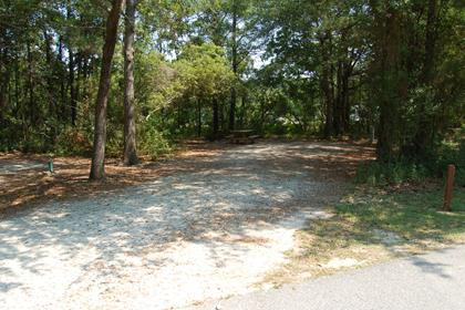 Image of Site #108 at the Campground at James Island County Park