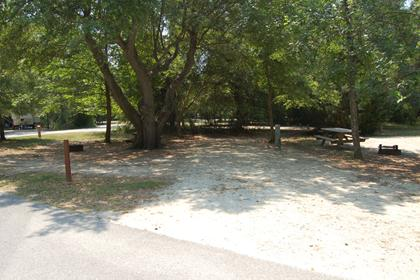 Image of Site #109 at the Campground at James Island County Park