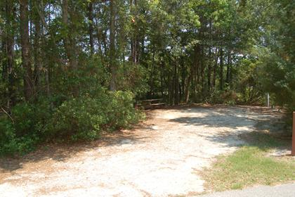 Image of Site #110 at the Campground at James Island County Park