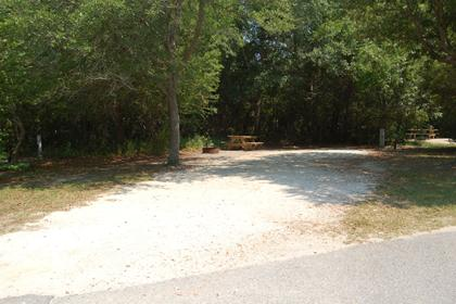 Image of Site #116 at the Campground at James Island County Park