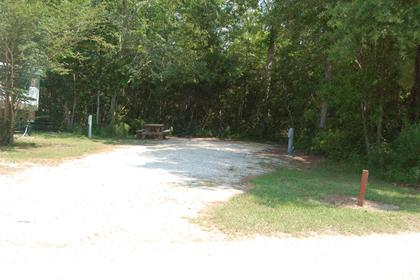 Image of Site #120 at the Campground at James Island County Park