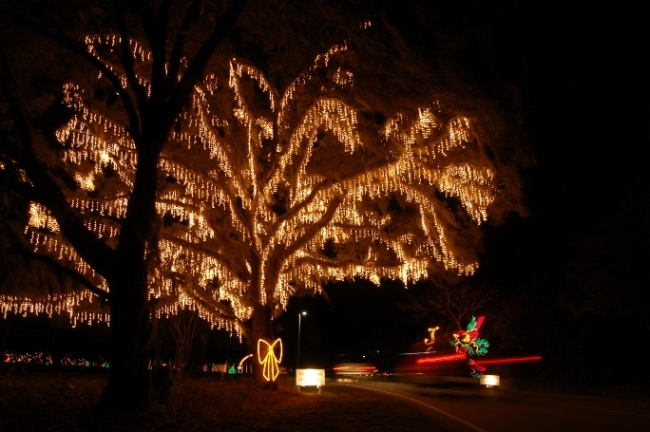 [ARCHIVED] Volunteers needed for the Holiday Festival of Lights