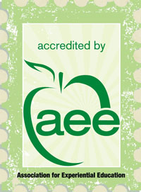 Link to AEE website