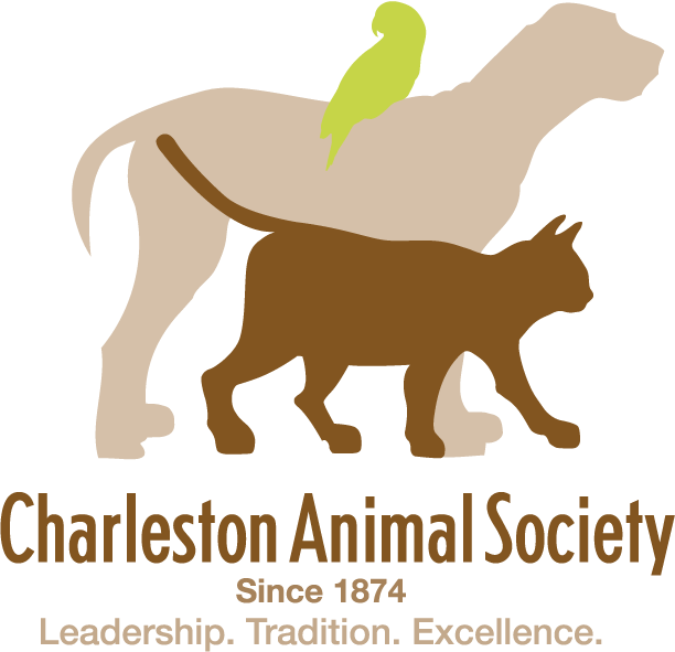 Charleston Animal Society Logo and link to website