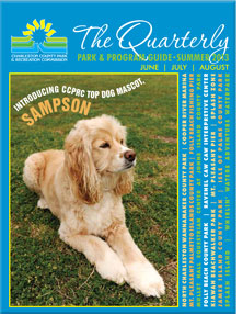 Summer 2013 Quarterly
