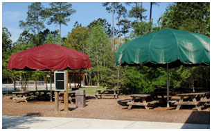Image of 2 party umbrellas and picnic tables at Wannamaker County Park