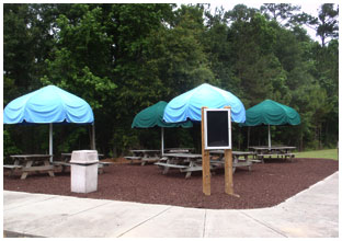 Image of the Whirlin' Waters Party Umbrellas